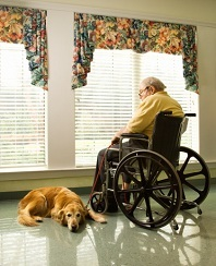 Nursing Home Accidents